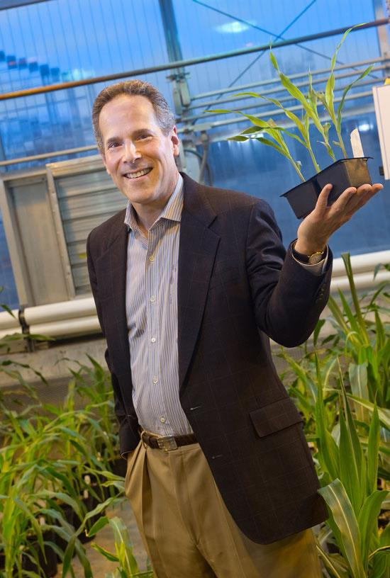JohnMay High corn prices are changing the way new biofuel plants are financed