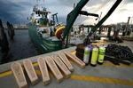 Print preview: Spill research monies serve to elevate St. Petersburg's marine science cluster