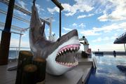 """A huge shark replica, known as """"today's catch"""" by the staff, greeted me on deck."""