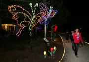 Some displays have themes like nature lights.