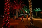 Some displays have themes like classic and alternative lights and nature lights.