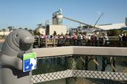The Manatee Viewing Center at Tampa Electric in Apollo Beach.