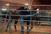Matt Mousseau from Ontario, Canada, stretches before his steer wrestling competition.