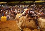 Rodeo announces 2013 Hall of Fame inductees