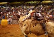 Jimmy Lathero from Fellsmere, Fla., rides a bull named PO during the bull riding competition. A rodeo clown waits in the barrel as a diversion, hoping to distract the bull.