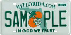 Drivers can now vote on which tag will replace the current Florida license plate (shown).