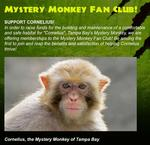 Tampa Bay Mystery Monkey finds home in Dade City