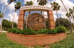 USF ends contract for internationally known educator <strong>Maria</strong> <strong>Crummett</strong>