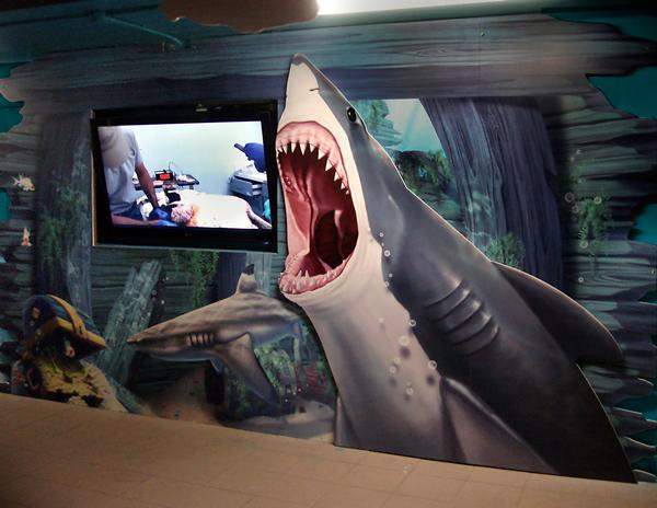 New themed environments at Clearwater Marine Aquarium.