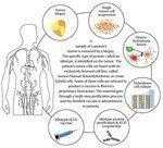 Public support swelling for Biovest drug