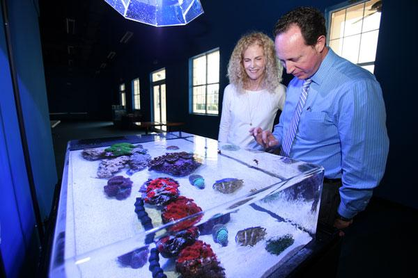 Patricia Hubbard, CEO of Hubbard Properties, and Howard Rutherford, CEO and president of Marine Discovery Center & Aquarium, in the new location with a small aquarium.