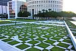 Downtown Tampa garden preservation effort hits wall