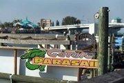 Gators' parasailing business.