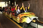 Bruna Ignatowska and Adriana Violetti from Vitoria-Es-Brazil ride the Cheetah Hunt coaster at Busch Gardens during free time from their Brazilian tour group.