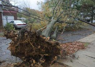 The aftermath of Hurricane Sandy has affected claims for jobless benefits in the U.S., according to officials.