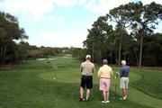 Players on Innisbrook's Copperheads golf course where the Transitions Golf Championship will take place.