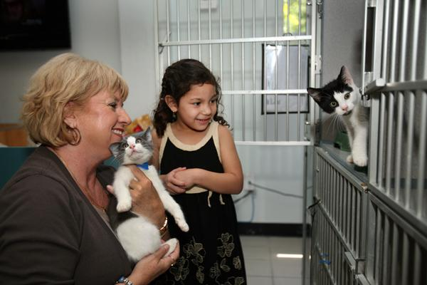 Brittany Michuci, 4, looks for a cat to adopt at Humane Society of Tampa Bay with the help of Sherry Silk, executive director.