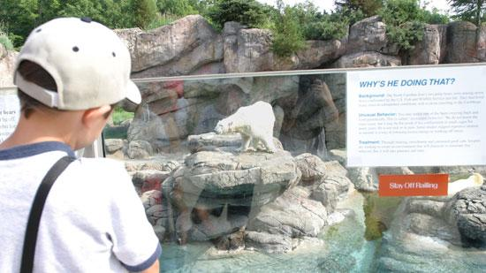 The North Carolina Zoo set a new attendance record over Memorial Day weekend.