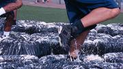 A closer look at the Grit Iron Tires, the first obstacle in the 5K relay 7 Campus Scramble.