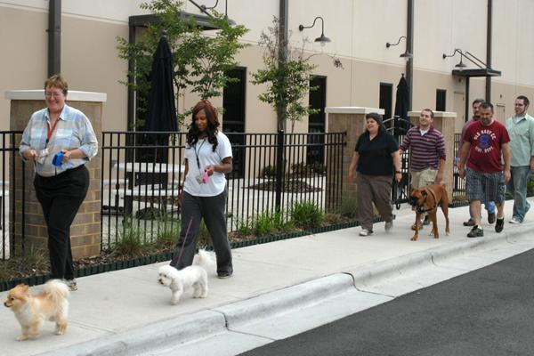 Replacements Ltd. employees, who are allowed to bring their pets to work, take part in a  walking program