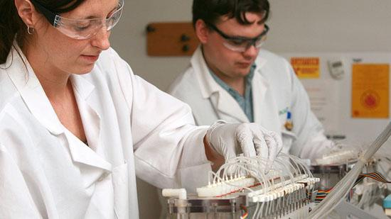 Targacept employees work on a drug candidate at the company's Winston-Salem lab. The company announced Tuesday that it is ending continued trials of a drug that was in development to treat depression.