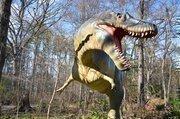 Ferocious dinosaurs such as the Albertosaurus awaits you inside the Dinosaur Trail.