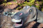 Hundreds of Maiasaura remains were found in just one site in Montana. These dinosaurs were very protective of their young, just like this one.