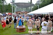 The crowd starts to build on day two of the festival.