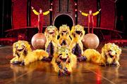 The Dralions perform during Cirque du Soleil's Dralion.