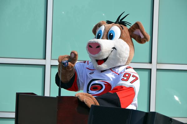 Prior to the announcement, Hurricanes mascot Stormy made sure the microphone was working properly.