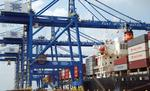 Wood to China boosting state port numbers