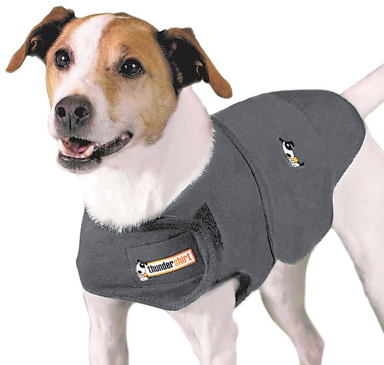 ThunderWorks makes these outfits for dogs that the company claims have a calming effect.