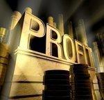 Bank of the Carolina posts profit