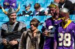 Vikings respond to concerns about unruly fans