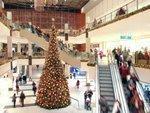 Report: Holiday spending will add $58 billion to Florida economy