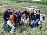 CliftonLarsonAllen LLP's D.C. region volunteer group joined The Anacostia Watershed Society on April 28 to plant more than 15 trees in an effort to protect and restore the river and its watershed communities.