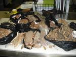 Suitcase full of animal parts seized at Dulles International Airport