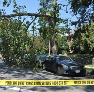 Millions of residents and businesses were without power following a massive storm that ripped through the Washington region June 30.