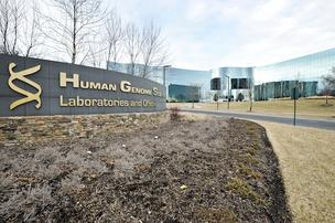 Human Genome Sciences is planning another round of job cuts at its Rockville headquarters.