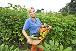 Farm-to-Fork Loudoun connects farmers, restaurants