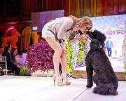 Fun, innovative events, such as Fashion for Paws, are often the way young benefactors initially get to know an organization.