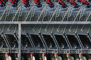 Shopping carts a little less full since the recession, according to the U.S. Grocery Shopper Trends 2012 Overview.
