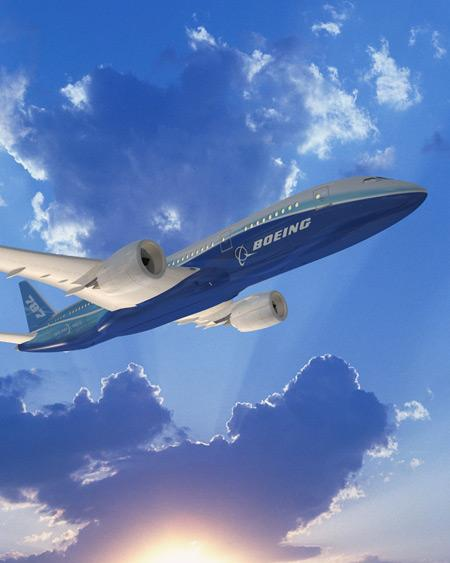 All Nippon Airways say the automatically dimming windows on the Boeing Co.'sDreamliner don't dim enough.
