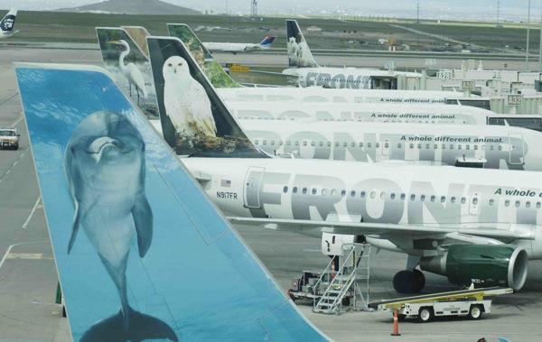 Frontier Airlines jets at Denver International Airport
