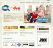 The Why Maize campaign has a website, www.whymaize.com, that advertises the city's new home tax incentive and other benefits.