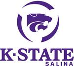 K-State Salina flight students take top prize at regional contest