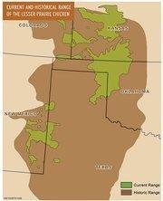 Current and historical rangeof the Lesser Prairie Chicken