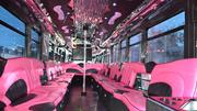 The inside of Spot's pink bus. The spacious interior gives patrons plenty of room.