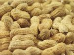Tierra Farm expands as it sees promise in peanuts