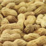 N.C. A&T licenses allergy-free peanut technology to Xemerge